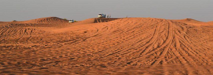 Desert-Safari-850x300