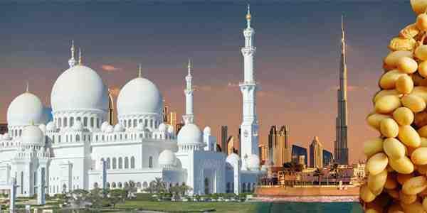 abu-dhabi-city-tour-fro
