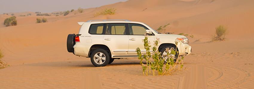 best-desert-safari-in-dubai-850x300