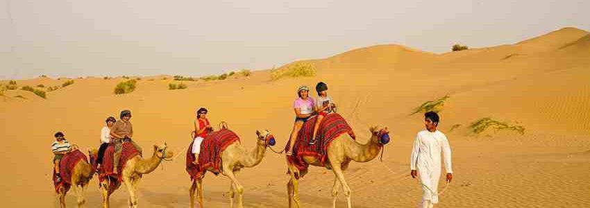 Best desert safari operator in Dubai
