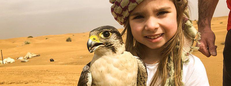 your-definitive-guide-to-finding-the-best-desert-safari-dubai
