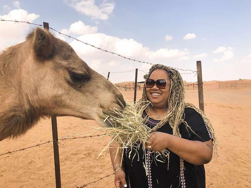 desert safari and bbq dinner in Dubai