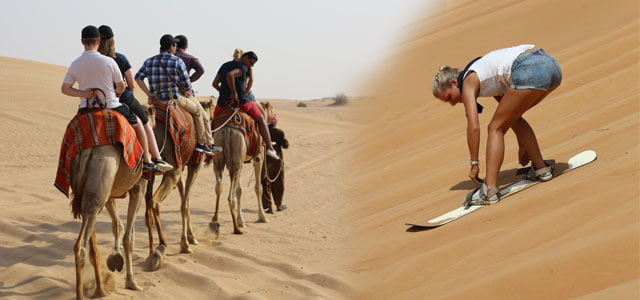 Camel Ride and Sand Ski Dubai