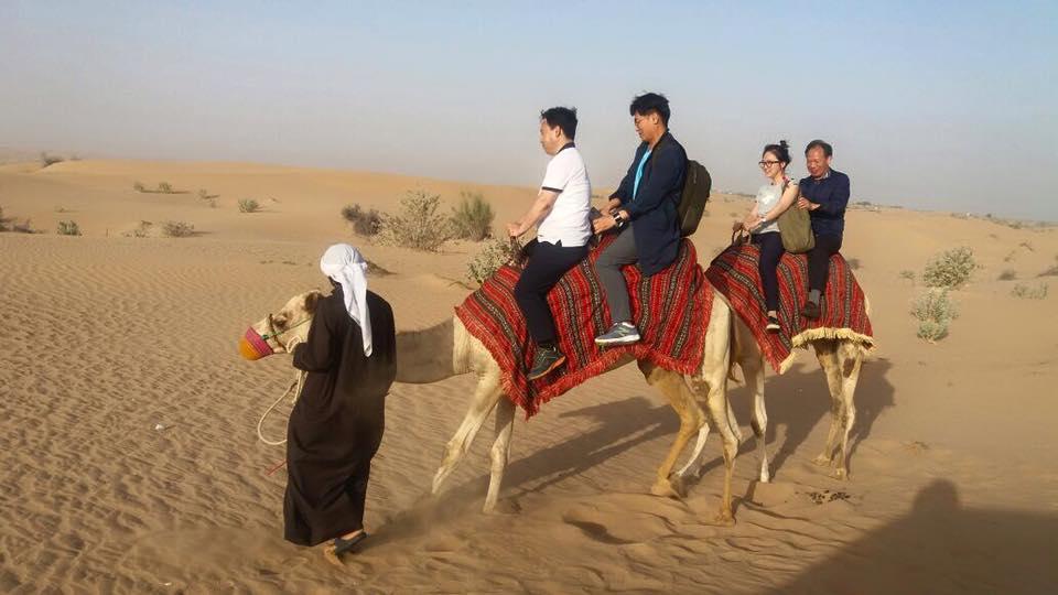 morning-desert-safari