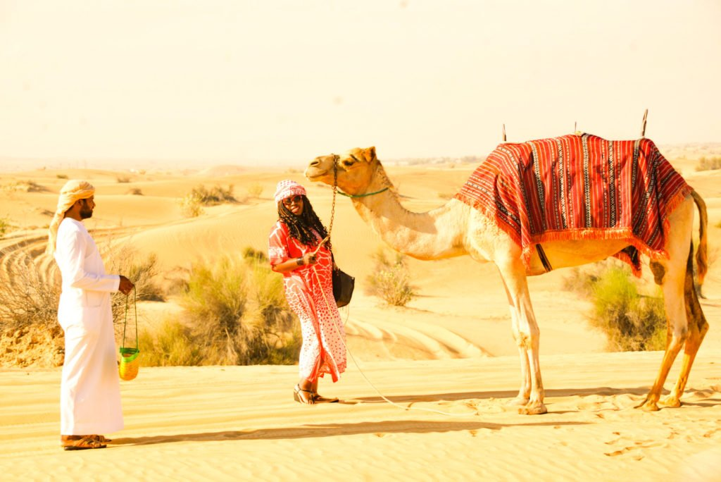 desert safari with camel trekking: sunrise desert safari with camel trekking: camel trekking desert safari in Dubai: evening desert safari with camel riding: camel riding and sandboarding tour: early morning desert safari with camel trekking