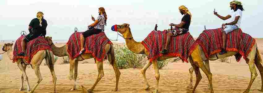camel trekking tour in dubai