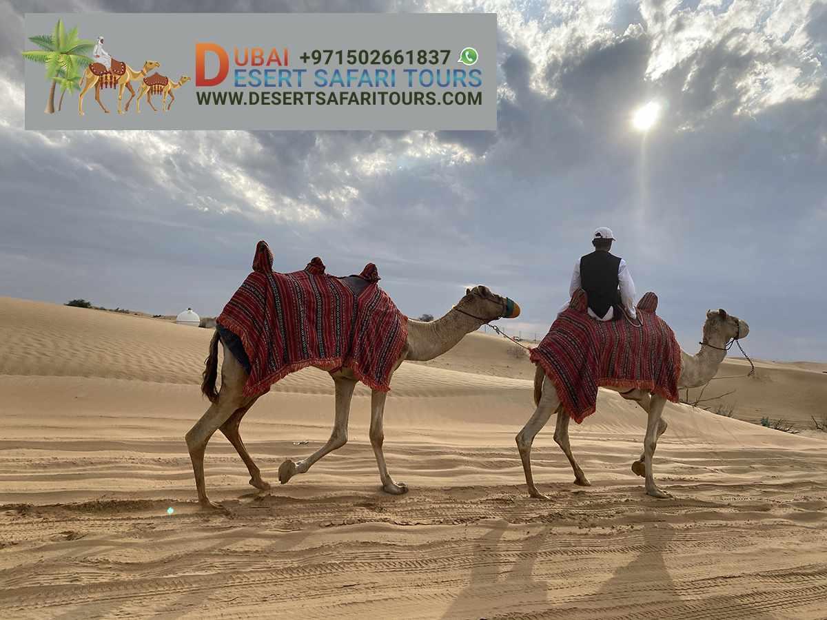 Desert Safari Tours In Dubai With BBQ Dinner