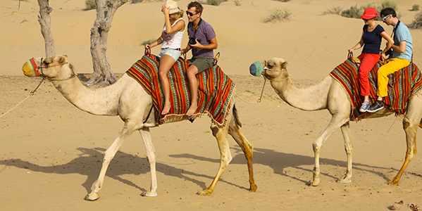 Explore Evening Desert Safari With Buffet Dinner and Belly dance