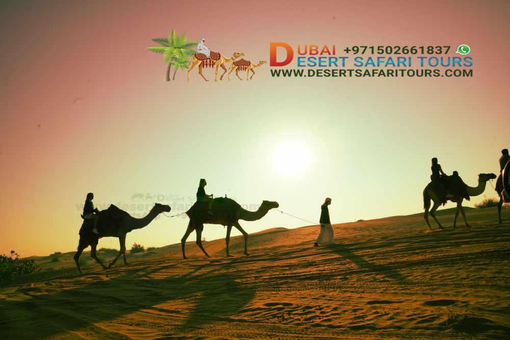 What is the best Desert Safari in Dubai? 1