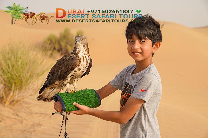 a A boy with an Arabian falcon